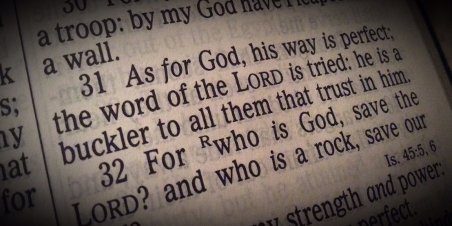2 Samuel 22:31 As for God, his way is perfect; the word of the LORD is tried: he is a buckler to all them that trust in him.